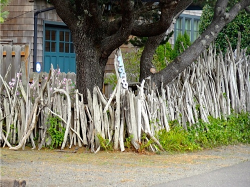 a driftwood fence (Allan's photo)...