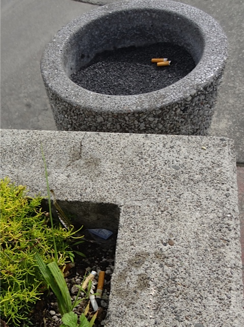 Allan's photo: The ashtray is right there, but the planter is the preferred receptacle.
