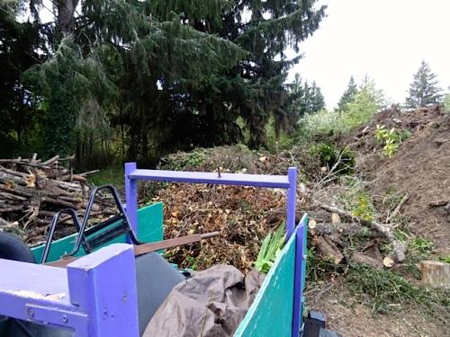 offloaded debris (Allan's photo)