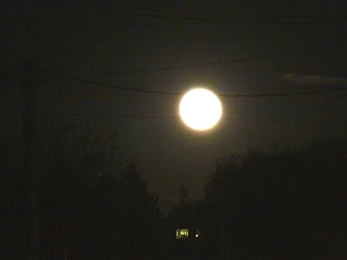 Allan's photo: The moon at the end of Lake Street had a pink hue.