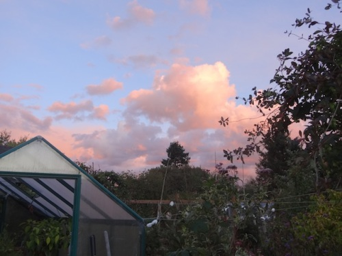 east over the greenhouse
