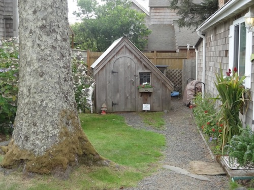 cute shed in Hutchins House back yard
