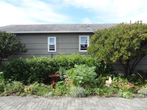 center courtyard hedge