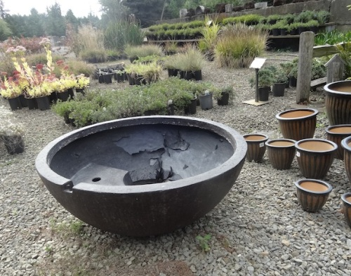 This water feature basin looked like concrete but was lightweight plastic...with peeling paint so I wondered if I could afford it.