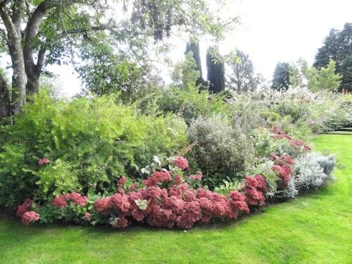 lavish lawn borders