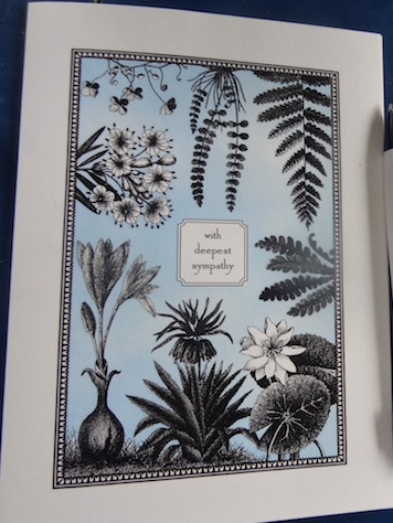 vintage botanical specimens card by luccapaperworks.com