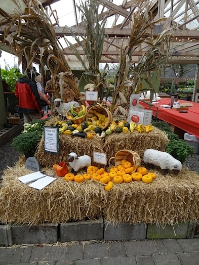 a harvest display