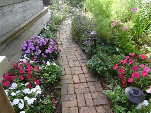 The impatiens walk turned out well. A rare success in getting rid of Geranium 'A T Johnson'!!