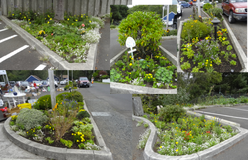 parking lot garden beds