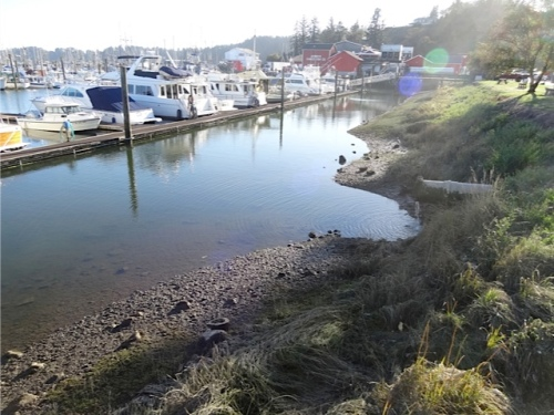 low tide, photographed after checking the garden on the south side of the port office
