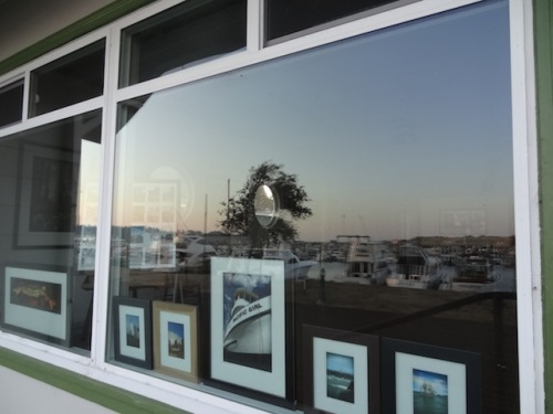 the south window of the Bruce Peterson photography gallery (open most Saturdays; go say thanks to Bruce and Wendi for letting us use their hose!)