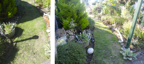 front path, before and after