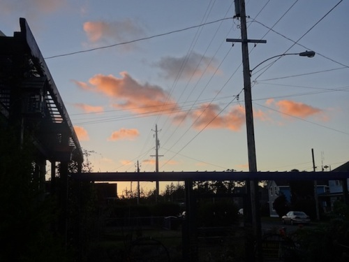 sunset over the new arbour