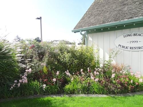 garden corner by restroom, SW quadrant of park