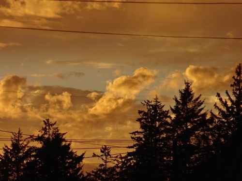 evening sky (Allan's photo)