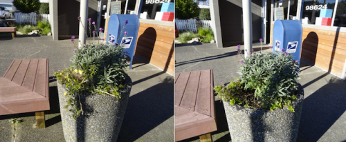 post office planter, before and after