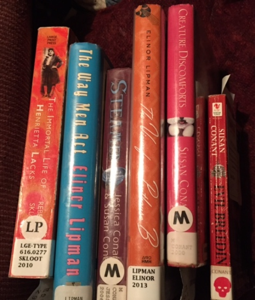 The first wave of staycation reading from the library. (I'm presently reading The Family Man by Elinor Lipman.)