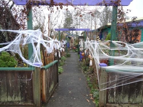 The Corridor of Spooky Plants™