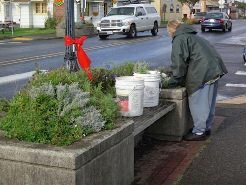 tackling a planter (Allan's photo)