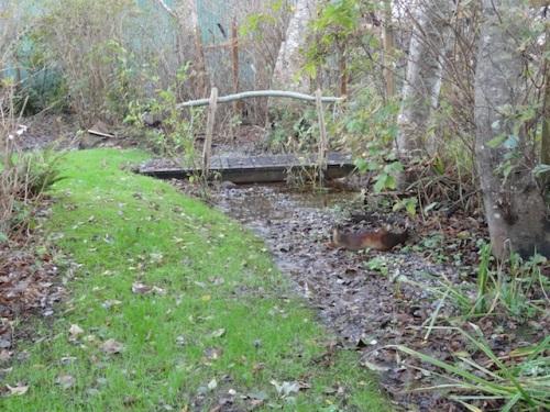 creekbed looking west