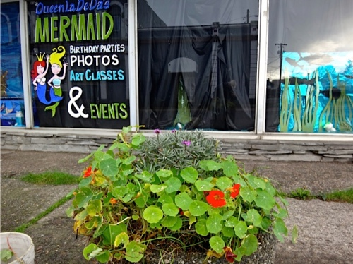 It was time to pull out the nasturtiums. (Allan's photo)