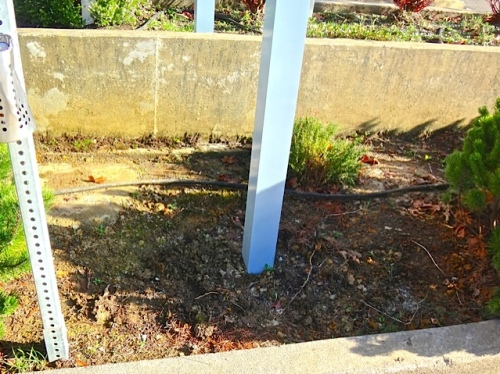 Allan's photo: the really horrible soil under the new sign