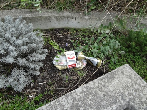 remains of a beer and smokes picnic in one of the planters