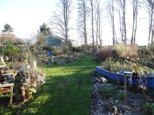 back garden, mowed