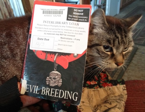 The reading session was enjoyed by all four cats.