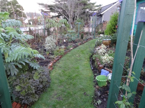 the front garden, further clipped and weeded
