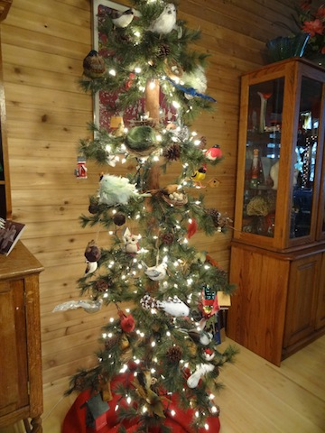 Debbie's Christmas tree featured birds!