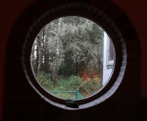 a well framed view to the woods