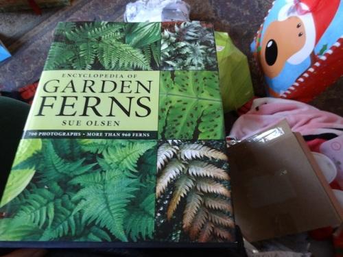 I gave Allan two fern books.