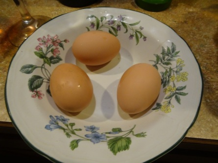 Melissa's new hens had laid their first three eggs.
