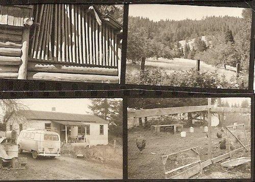 a homesteading farm I visited: WHO farm in Oregon