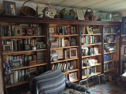 I'd like to have time to re-read some books from my own collection...and yet have so many books out from the library, and new books I've bought, and staycation is slipping away so quickly...