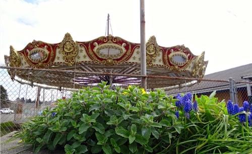 carousel3-19.jpg