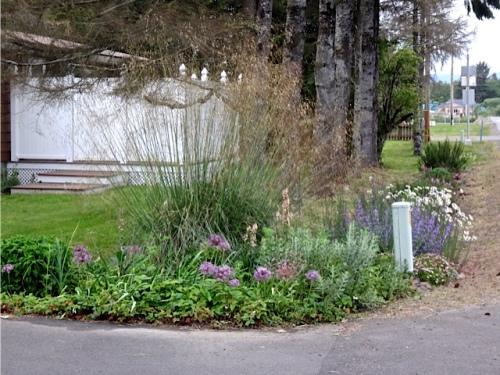 streetside garden (Allan's photo)