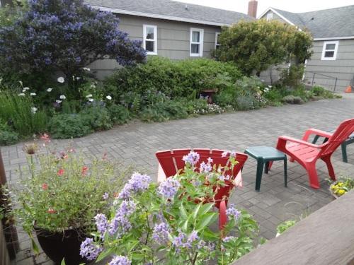 center courtyard