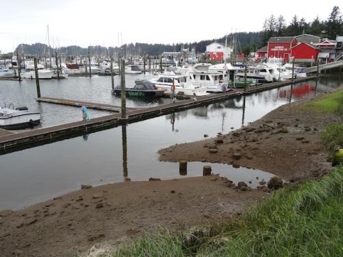 a low tide