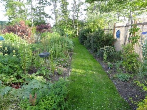 the west path: Fuchsia Lane