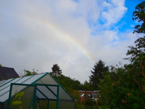I did not get my shoes on in time to catch the rainbow's brightness.