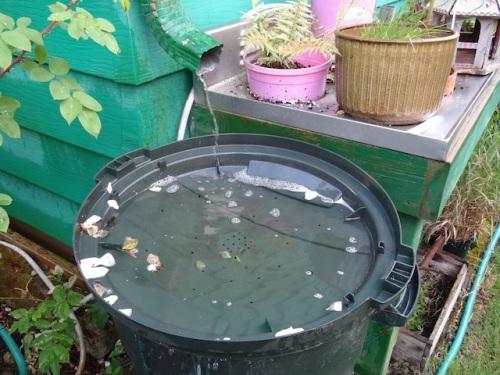 rain barrels full