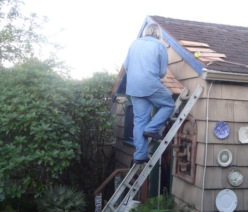 Allan was reroofing the porch roof on his shed.