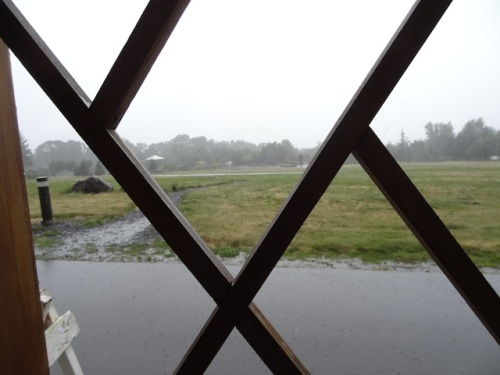 Waiting for the tram in torrential rain, looking at the garden far across the field