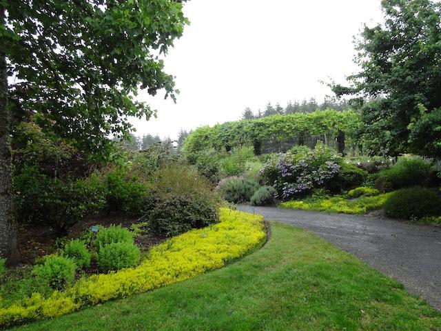 Oregon Garden, part one | Tangly Cottage Gardening Journal