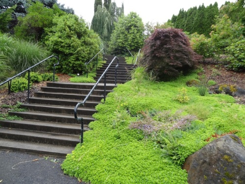 Some easy stairs to climb.