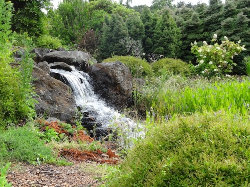 I think this waterfall was descending from the wetlands that provide water for the gardens.