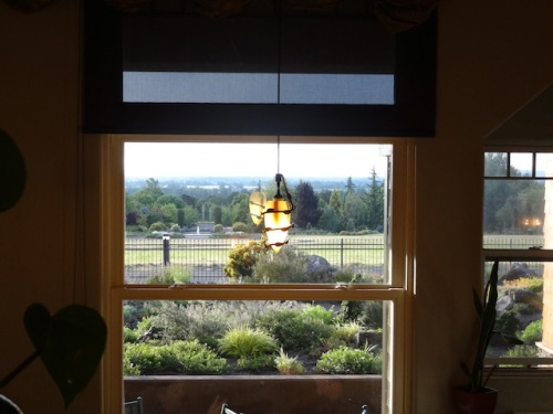 garden views from our table. Oregon Garden is below the grassy field.