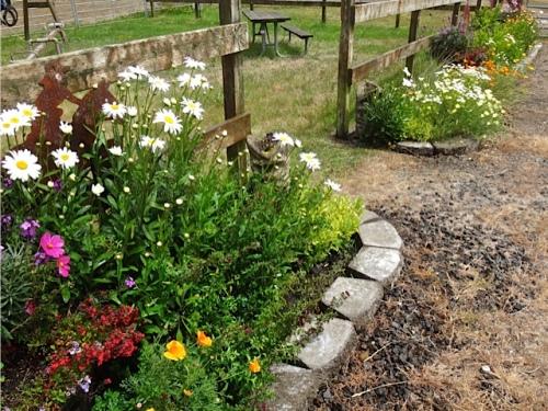 garden was dry...so we watered (Allan's photo)